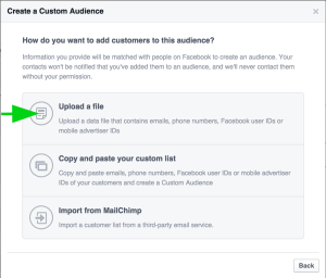 create-custom-audience-upload-file